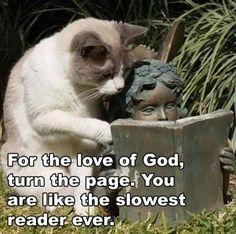 The slowest reader ever....