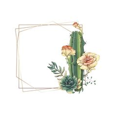 Colorful wedding frame with succulents and cactus. Premium Vector – My Wedding Dream Cactus Drawing, Cactus Art, Cactus Flower, Cactus Backgrounds, Wallpaper Backgrounds, Cactus Vector, Colorful Frames, Wedding Frames, Flower Frame