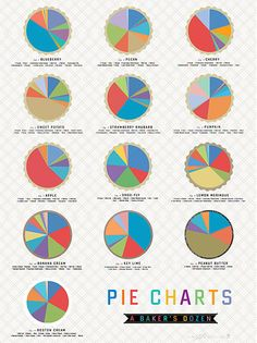 Pie Charts (A Baker's Dozen)