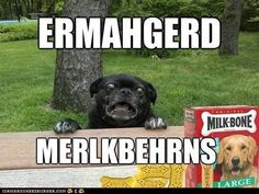Gets me every time. Ermahgerd!!!