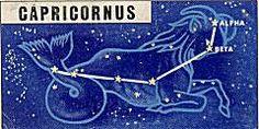 Capricornus (Sea Goat)
