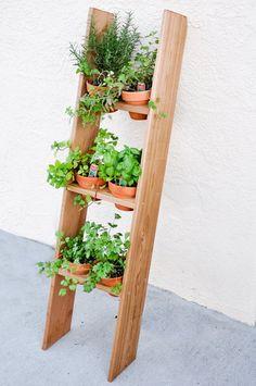 Front porch herb garden
