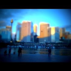 Sydney Darling Harbor through tiltshift photography. (via Instagram)