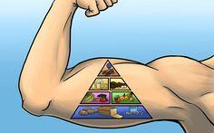 Protein: Der Baustoff für die Muskeln und wie Du automatisch durch eine höhere Proteinaufnahme abnimmst.