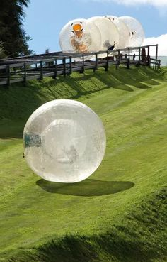 Zorbing's an iconic New Zealand adventure activity - rolling downhill in a large inflatable globe.