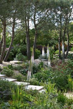 """France - Normandie - Grigneuseville - """"Les jardins Agapanthe"""" - Paysagiste: Alexandre Thomas - www.jardins-agapanthe.fr"""