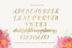 Pretty Script (50%Off) by Decade Type Foundry on @creativemarket