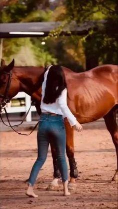 Best Love Songs, Best Love Lyrics, Cute Love Songs, Beautiful Words Of Love, Beautiful Nature Scenes, Beautiful Horses, Beautiful Eyes, Beautiful Things, Cute Horse Pictures