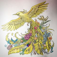 "14 curtidas, 1 comentários - @julianrossoni no Instagram: ""👨🏻🎨 ________________________🖌 #animorphia #animorphiacolouringbook #kerbyrosanes #bird #doodle…"""