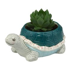 A hand-painted tortoise planter that's ideal for a succulent or similar small plant. Why not pop it on your windowsill or use it to brighten up your interior?