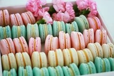 Mini Cakes, Macarons, Watermelon, Cake Recipes, Deserts, Food And Drink, Baking, Fruit, Vegetables