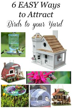 Attracting songbirds to your yard is a fabulous way to minimize insect pests, enjoy their songs and colors and teach your children the beauty of nature! 3 essential things are necessary to attract birds: food, water and shelter. Here are 6 EASY ways to at Backyard Birds, Backyard Ideas, Insect Pest, How To Attract Birds, Garden Items, Bird Houses, Frugal, Attraction, Butterfly
