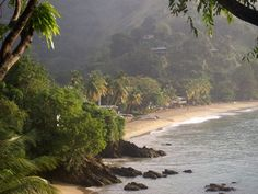 Tobago (Trinidad and Tobago)..so beautiful in the morning or when sun comes out soon after the rain..