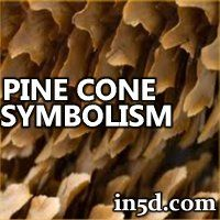 Pine Cone Symbolism  Esoteric, Spiritual and Metaphysical Database.  The symbolic may represent the pineal gland, which is known as the third eye---the gateway to the higher self or soul.   In the Vatican there is a large statue of a pinecone. The scepter the pope uses has a pinecone at the top.