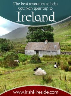 Irish Cottage Welcome.Cottage and Sheep in Connemara, Co Galway-love Connemara. Galway is next to my home county Mayo-Yogi Therese Oh The Places You'll Go, Places To Travel, Places To Visit, Ireland Vacation, Ireland Travel, Cork Ireland, Dublin Ireland, Irish Cottage, Dream Vacations