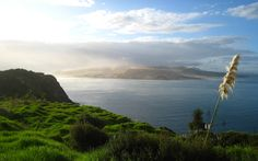 20 Killer Photos of New Zealand