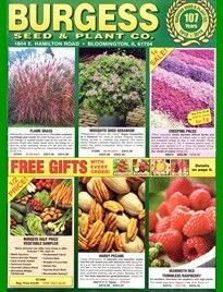 Pin On Gardening Catalogs