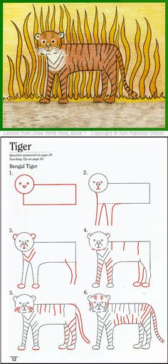 Draw Write Now, Tiger Drawing Lesson for Children