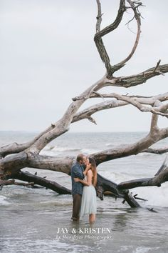 Literally my dream! Engagement Session, Engagement Photos, Windsor Ontario, Photo Contest, Family Photographer, My Dream, Photography Tips, Jay, Dream Wedding