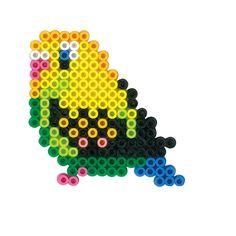 Shell parakeet - Bird perler beads