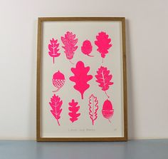 My drawings of Oak leaves and acorns screenprinted in fluorescent pink  Hand pulled 1 colour screen print on lovely Fabriano Rosaspina paper.  The print is titled and signed.  The print is A3 and will fit an off the shelf frame.  ***FRAME NOT INCLUDED***  Prints have a sturdy cardboard backing and are wrapped in a cellophane sleeve. I post them flat in a hard backed envelope between 2 more layers of card.  Delivery to the UK is Royal Mail First class medium parcel service. Everywhere else…