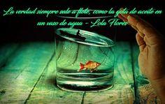 La verdad siempre sale a flote, como la gota de aceite en el vaso de agua
