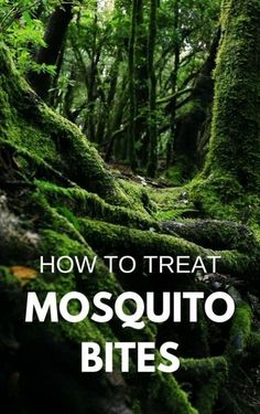 Hiking, camping, backpacking: How to treat mosquito bites on summer vacation, even more for kids out Hiking Tips, Camping And Hiking, Tent Camping, Backyard Camping, Backpacking Tips, Camping Trailers, Family Camping, Campsite, Glamping