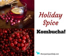 Are you looking for a special Kombucha flavor to brighten your holiday season? Then you will love this Holiday Spice Kombucha! It is sweet with a spicy...