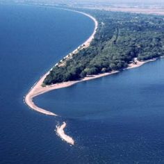 Experience nature at the most southern point of Canada! Enjoy beaches on Lake Erie, Carolinian forest, and marsh land. Find Point Pelee National Park in Leamington, Ontario, Canada. Visit Canada, O Canada, Canada Travel, Canada National Parks, Parks Canada, Ontario Camping, Best Romantic Getaways, Camping List, True North