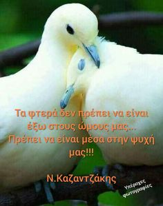 Greek Quotes, Picture Quotes, Cool Words, Life Quotes, Wisdom, Beautiful, Pictures, Nice, Quotes About Life