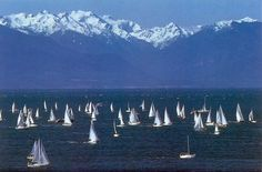 Victoria, Vancouver Island, British Columbia, Canada - Pass your driving test so you can admire a sailboat + mountain view like this