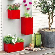Garden design – Bright red flower containers