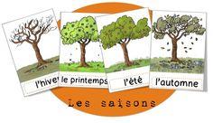 Les saisons - CP CE1