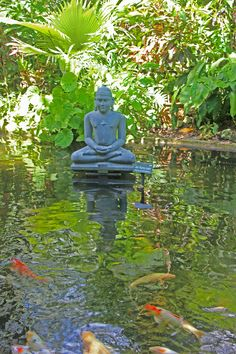 Buddah Statue in Koi Pond Japan