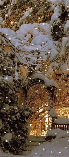 I love winter lights in snow. lots and lots of beautiful snow. Winter Szenen, I Love Winter, Winter Magic, Winter Christmas, Prim Christmas, Christmas Lights, Winter Coming, Christmas Scenes, Winter White