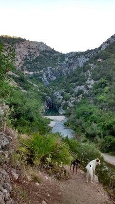 Ya estamos casi en la surgencia del rio Guadiaro. Dentro del cañon de las buitreras.