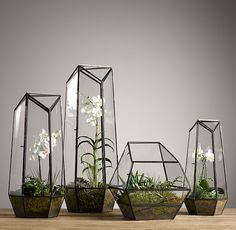 "Faceted Glass TerrariumSpecial $89 - $119  Faceted walls of paned glass lend a sculptural presence to the display of prized flora. Its geometric design is supported by a metal framework, while the generous height makes it an ideal showcase for orchids and other tall plants.  Show product details... Dimensions      Small: 10½""W x 9½""D x 18""H; 6.5 lbs.     Medium: 11""W x 11""D x 22½""H; 11.5 lbs.     Large: 12""W x 12""D x 29""H; 16.5 lbs.     Wide: 12""W x 12""D x 13""H; 10.5 lbs."