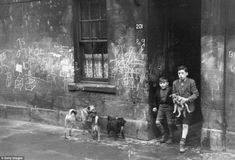 Two boys with their dogs in Gorbals in a street rife with graffiti in 1948