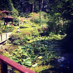 """See 378 photos and 28 tips from 2387 visitors to Powerscourt House and Gardens. """"Gotta visit when in Ireland! It's just beautiful & serene. Japanese Gardens, Open Your Eyes, Outdoor Furniture, Outdoor Decor, Serenity, Ireland, Places To Visit, Pictures, House"""
