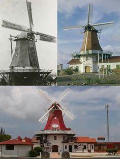 Korenmolen De Olde Molen. De molen is in 1815 gebouwd als poldermolen bij Blijham. In 1897 is de molen afgebroken en herbouwd als korenmolen in Wedderveer, waar de molen tot 1960 gestaan heeft (linker foto). De molen is in 1960 afgebroken en weer herbouwd op Aruba, en in gebruik genomen als museum en restaurant (rechter foto). Momenteel is de molen enkele keren gerestaureerd door mensen die waarschijnlijk geen molenkennis hadden (onderste foto).