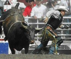 Adriano Moraes Bull Riding School - we have schools to learn not to do stupid in the arena with a very angry bull