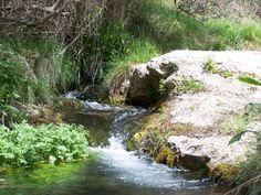 10 años del Parque Natural de Sierra de Mariola / 10 years of Natural Park of Sierra de Mariola