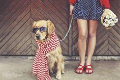 best_pet_photo_ideas_pictricks_best_photo_editing_7