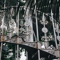 Architectural Antiquity- In the Greenhouse/Palm House @kewgardens Ornate wrought iron Victorian staircase constructed by Richard Turner in the mid 1800's