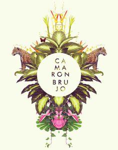 CamaronBrujo 2014 by Carolina Niño, via Behance