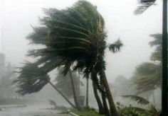tropical storm come to shore. feel the wind and see the waves. if his love's like a hurricane, I am a tree. What Is A Hurricane, Hurricane Wilma, Hurricane Katrina, Earth Weather, Wild Weather, Tornados, Severe Weather, Extreme Weather, Hurricanes For Kids