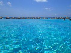 Iberostar Cancun Todo Incluido y Campo de Golf http://wp.me/p2hxLO-Gz