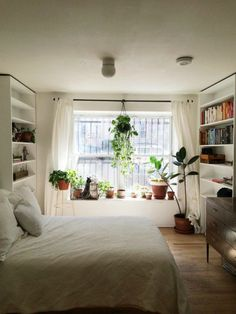 Brighten up a neutral room with fresh plants.