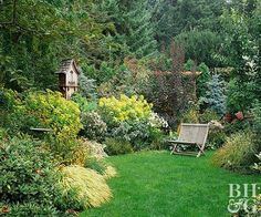 Plant this collection of beautiful annuals and perennials to enjoy a garden with spring-to-fall color.