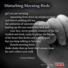 """Disturbing Morning Birds"" by Carmen Calatayud #poem #poetry"